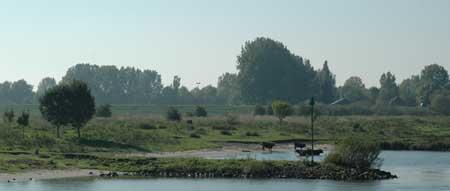 Meijnerswijk